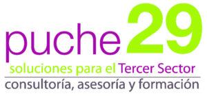 Asesoría, consultoría y formación para asociaciones sin ánimo de lucro - puche29