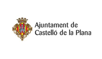 Ajuntament de Castelló de la Plana - asesoría especializada en asociaciones y fundaciones sin ánimo de lucro - puche29